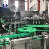 Graines de basilic automatique de petites fabriques de pâtes de jus d'embouteillage de remplissage de la machine pour le flacon en verre 3000bph