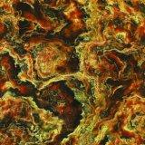パキスタン(8D6083)の美しい大理石のセラミックタイル