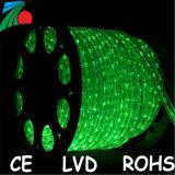 11mm 13mm 2 des grünen im Freien 220V 110V LED Seil-Licht der Draht-LED Seil-Licht-