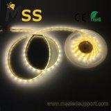 Bianco caldo SMD 2835/della fabbrica 600LEDs/120LED/M indicatore luminoso di striscia dei 5050 LED