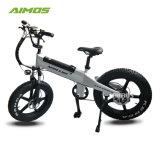 48V 500W neumático Fat bicicleta eléctrica con 48V 11,6ah batería LG