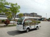 Parque passeios turísticos com Mini-Autocarro 8 lugares e um tronco