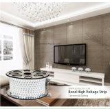 Striscia flessibile di singolo colore di CA della striscia 220V 110V di alta qualità SMD 5050 50m/Roll LED