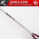 O OEM N10 Professional Sporting Goods em fibra de carbono grafite Badminton Racket