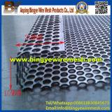 Лист нержавеющей стали Perforated, пробивая отверстие, Perforated металл