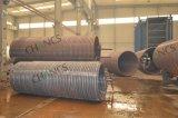 Il carbone verticale ha infornato la caldaia Chain della fornace della griglia