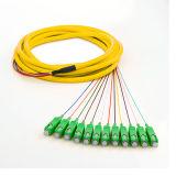 Tresse de fibre optique de bande de rubrique de mode unitaire de Sc RPA de 12 faisceaux