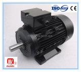 Motor Eléctrico Trifásico de Eficacia Alta IE2 (negro, Aluminio)