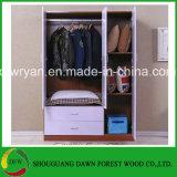 Kabinet het van uitstekende kwaliteit van de Garderobe van Drie Deuren