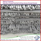 De ingepaste Staven van het Roestvrij staal SS304 SS316 van het Roestvrij staal Ss201 van de Staaf Al Bout van de Nagel van de Draad