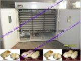 定温器機械(WAWF)を工夫するフルオートマチックの鶏の卵