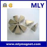 선형 모터 영원한 NdFeB /Neodymium 자석