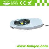 60W 4300lm Rua LED Light