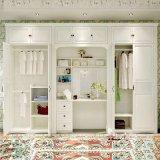 Настроенные в европейском стиле шкаф