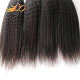 Remyの人間の毛髪のWeftカンボジアのバージンの毛のねじれた直毛のよこ糸