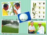 Agrochemicalsの昆虫防除の殺虫剤(CAS: 66215-27-8)技術的な95% Cyromazine