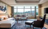 het vijfsterren Meubilair van de Slaapkamer van het Hotel van de Luxe Hilton/het Kingsize Meubilair van het Hotel/Meubilair van de Slaapkamer van het Hotel van de Reeks van de Luxe het vijfsterren (glb-20170831000)