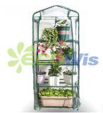 Mini Green House, un mini-châssis de plantation (HT5111)