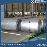 Fornitore d'acciaio della striscia Zinc120
