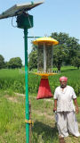 Lampada solare di Parassita-Uccisione dell'indicatore luminoso di controllo dei parassiti/oscillazione di frequenza/assassino solare della zanzara di /Electric dell'indicatore luminoso dell'assassino dell'insetto