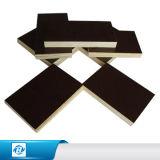 Fabriek 1220X2440X10/11/12/14/15/17/18mm het Mariene Bruine Zwarte Film Onder ogen gezien Triplex van /Poplar