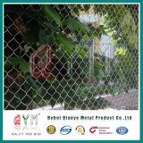 Le PVC bon marché a enduit la frontière de sécurité galvanisée de maillon de chaîne de plastique vinyle