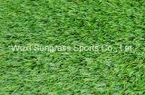 40 [مّ] يرتّب حديقة عشب اصطناعيّة ([سونق]--[ه00119])