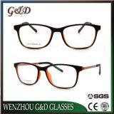 Het Nieuwe Tr90 Oogglas van uitstekende kwaliteit Eyewear van het Frame van Glazen Optische