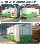 Modulare vorfabrizierte Stahlbehälter-Häuser