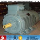 Série Y Trifásico Motor de indução de Borda