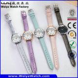 최신 판매 OEM/ODM 석영 여자 손목 시계 (Wy-098C)
