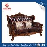 Juego de sala de estar sofá (N218)