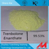 Steroid Ruwe Poeder Parabolan 10161-33-8 van 99% Trenbolone Enanthate