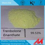 Pó cru esteróide Parabolan 10161-33-8 de 99% Trenbolone Enanthate