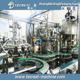 Chaîne d'emballage de mise en bouteilles remplissante de production de petite bière de brasserie