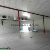 Cold Storage, Cold Room, Refrigeration Part, PU Sandwich Panel