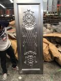 Soncapの熱い販売のナイジェリアによって押される鋼鉄ドアの皮