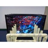 65 pulgadas de pantalla HD de alta Panel de la pantalla táctil de escritura a mano con el software