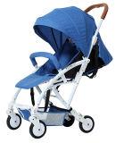 Soem-Fabrik-Licht-Baby-Spaziergänger