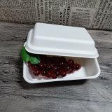Контейнер еды багассы с отдельно контейнером салата Compopstable крышки