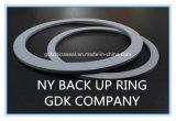 Ny o anel de vedação da haste/anel de apoio