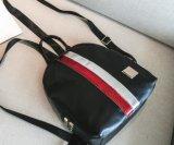De eenvoudige Handtassen van de Schooltas van de Rugzak van het Ontwerp