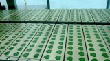 A linha de produção automática para os doces suaves e Coque Candy