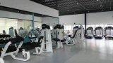 Strumentazione di forma fisica della Cina/costruzione corpo di forma fisica/pedana mobile di forma fisica