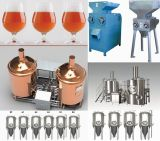 El equipo de Cervecera micro cervecería/máquina de fabricación de cerveza 100L