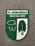 Correção de programa tecida lisa do bordado da escola do logotipo feito sob encomenda da forma para a roupa