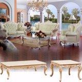 Sofá de cuero con mesa de madera para muebles de hogar (517)