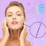Linha de levantamento da roda denteada de Pdo do colagénio da clínica da beleza