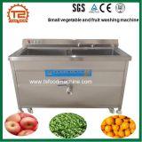 Kleine Gemüse-Ozon-Desinfektion-Reinigung-und Reinigungs-Maschine
