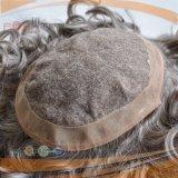 Parrucca grigia del Mens dei capelli umani (PPG-l-01694)